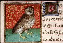 birds Illuminated manuscript