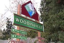 We Love Woodinville