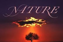 ╭⊰✿ NATURE ✿⊱╮ / ... our wonderful earth ♥