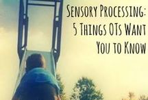 Resources : Sensory Processing Disorder