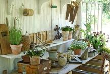Gardens / by Sydney Rae Schiller