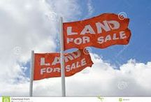 Real Estate Investing Land / Real Estate Investing in Land, Articles, Tips, How to and Why you should consider buying land