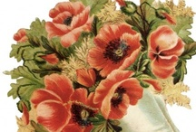 Vintage Flowers / by Monica Bourne