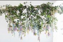 - installation - / by Emily Leach