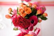 flowers / by Dee Watson