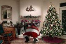 Christmas / by Vanessa Fay Jones