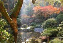 Jardín - cuidados / Plantas y parquización para el jardín; tanto exterior como interior. / by Eps-Omega AKAngie