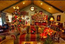 Holiday Christmas / by Simply RED (Rustic-Elegant Decor)