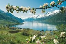 Norge/ Norway / #Sights in Norway #tourism #norwegianculture #landscape #history #heritage #everything norway