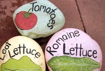 Green Thumb / Easy gardening tips and beautiful garden design.