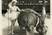 CIRCUS! / We love the circus, we love juggling balls, and we love the whimsical imagery circuses have inspired over time.