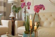 #SheblogsDesign / Home decor + design inspiration