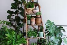 Urban Garden / Clever ideas integrating gardens in small urban spaces