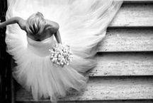 Bridal Image Inspiration / Inspiration to capture glamorous images of brides