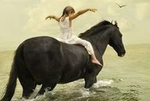 Inspiration Kit: Horses / Horses, ponies, nature, equine, people with horses, horse photography, spirit animals.