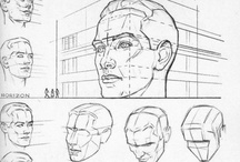 Anatomy of the head and skull