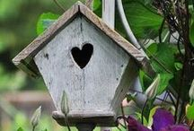 garden sheds, birdhouses and greenhouses