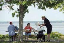 Enjoy a Picnic in Stafford Va / Favorite picnic spots in Stafford County