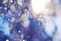 • WINTER •