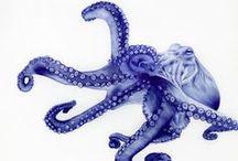 art .:. octopus