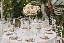 Wedding Bells / Wedding inspo/decor