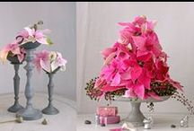 Cut flowers and Indoor Flowers /