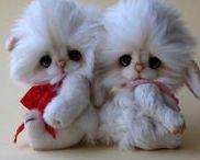 Teddy - nemezelés - kézzel készített állatkák