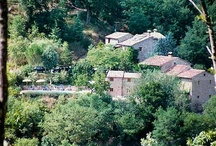 """Agriturismo Cà de Carlicchi / Farm Holidays Accommodations Tuscany Cortona. Ca de Carlicchi is a lovingly restored farmhouse in Tuscany, bordering Umbria; far from mass tourism, but near beautiful old towns, we offer warm Italian hospitality with the possibility of individual arrangements for your holidays. We think that quiet and nature are the starting points to find the well-being of body and soul, especially in a world where the old virtue of """"being idle"""" is apparently forgotten."""