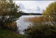 Kaukjärvi / #Kaukjärvi #Kamenka #Karjalankannas