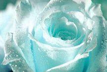 Colour therapy: Turquoise, aqua blue