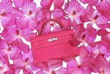 {designer-purses} / by C