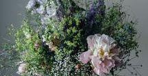 Kvety a zatisia