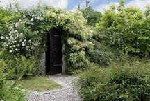 Garden cellar