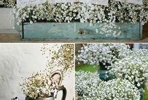Wedding Ideas...for mine and Danes little wedding