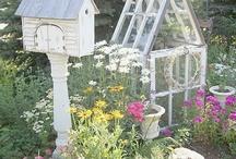 Gardening  / by Diane Mangold