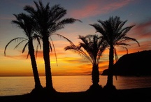 La Herradura, South Spain Costa Tropical / You can now profit from Learning the Spanish Language Online from the comfort of your own home! Professional & Personal courses, guided and evaluated by Spanish native teachers in Spain. www.spanish-school-herradura.com/online-spanish