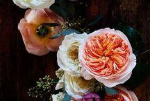{ bonheur floral } / floral bliss. everything flowers.