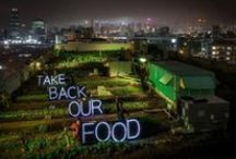 Food roofs - Groenten daken / A collection of pictures about all the benefits of urban farming on rooftops with the goal to show people the benefits so they start to take action and use their rooftop - Een verzameling beelden van alle voordelen die urban farming biedt voor het gebruik van daken zodat meer mensen actie gaan ondernemen om het dak te benutten.