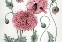 { bella rosa } / Pink!