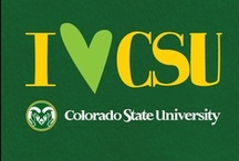 We Love CSU / by Fidelity National Title Company (Colorado)