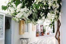 { mediterranean summer } / life in the mediterranean during the warm air