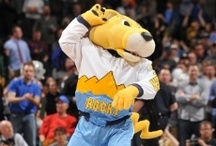 Denver Nuggets / by Fidelity National Title Company (Colorado)