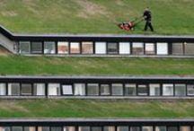 New upcoming professions on the roof - Nieuwe arbeidsplaatsen voor dakwerkzaamheden / by dakwaarde - roofvalue