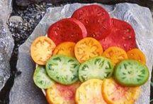 Tomatoes  / by Jennifer England