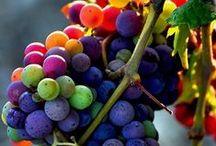 Frutas / Eu amo!!!!!!!!