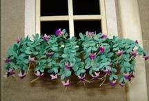 poppenhuizen- planten en bloemen