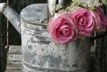 Antique & Shabby Chic / #Antique #Shabby Chic