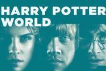 potter's world