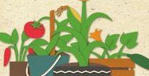 Huerta/Garden. / Ideas y consejos.