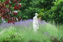 Garden of Fantasy / Gardening is fun, rewarding, even profound at times. Here we add some fun by finding the oddest, prettiest and fantastical things for the garden.